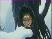 Owl is in asleep.