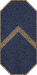 GAN Petty Officer