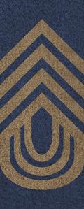 SWA Army Sergeant Major