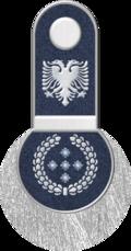 Lordaeron Army O-13