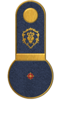 SWA Ensign