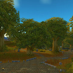 Sunny Glade prior to the First War.