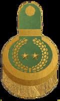 Kul Tiras Vice Admiral