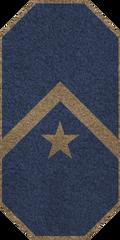 GAN Master Petty Officer
