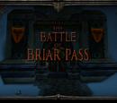Battle of Briar Pass