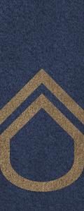 SWA Master Corporal