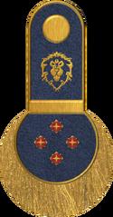 SWA High Commander