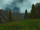 Highpine Valley