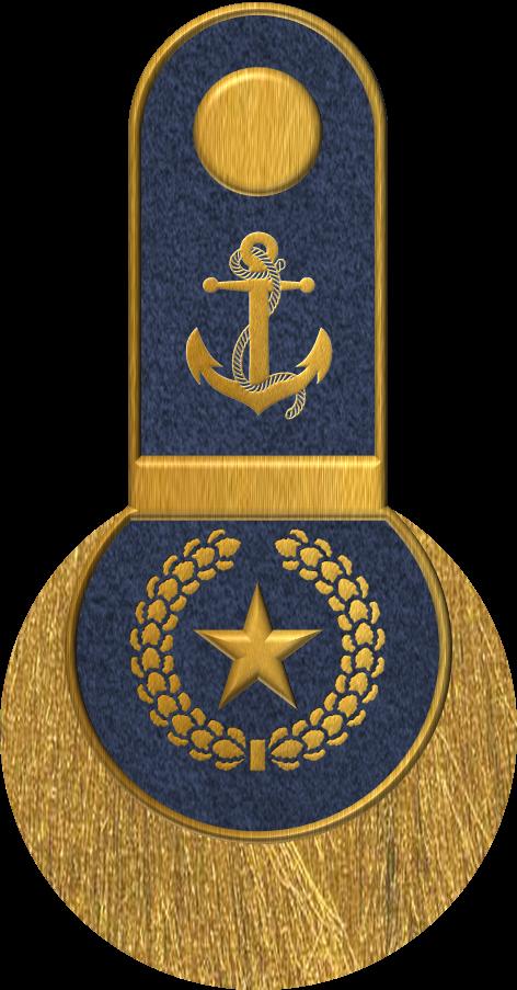 Grand Alliance Naval Ranks And Posts Surface Submarine Fleet