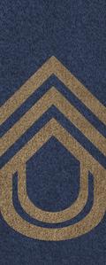 SWA Chief Sergeant