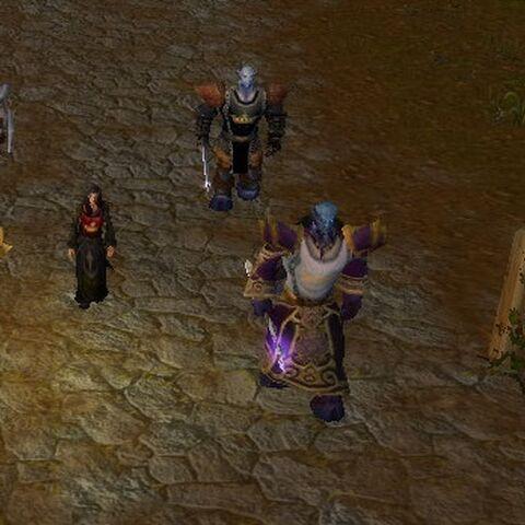Members of the Order on patrol.