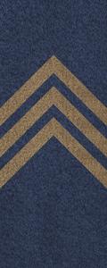 SWA Sergeant