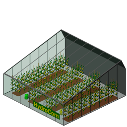 File:Cornplantation.png