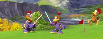 Moorhühner kämpfen