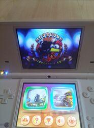 Moorhuhn Director's Cut Nintendo DSi
