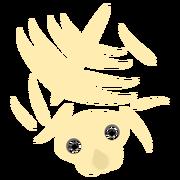Rhino Carcc