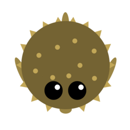 Pufferfish2