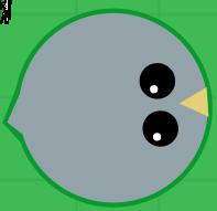 Rhinold