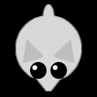 The Arctic Fox.
