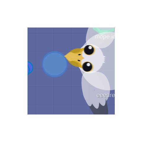 A Pelican dropping <a href=