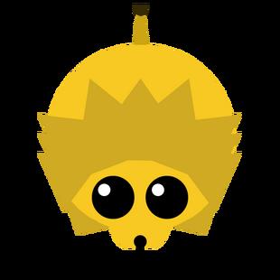 Older Lion