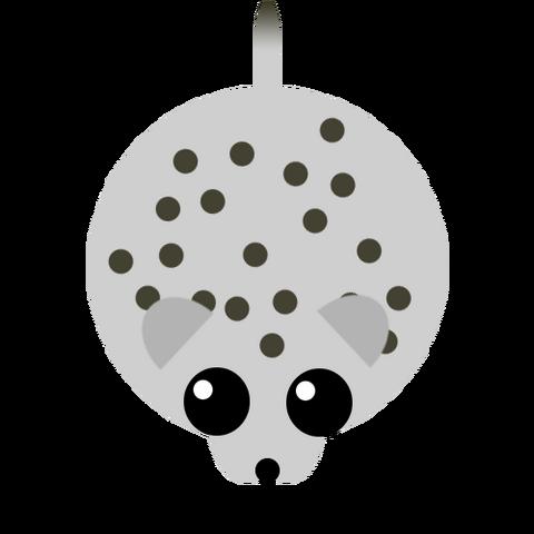 Plik:Snowleopard.png