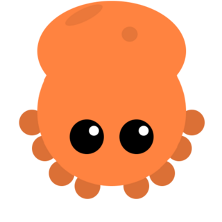 The Octopus.