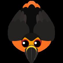Toucan (2)