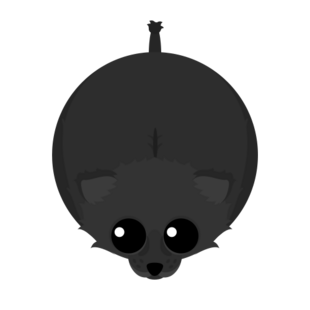 Black Lioness