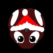 Winterkillerwhale