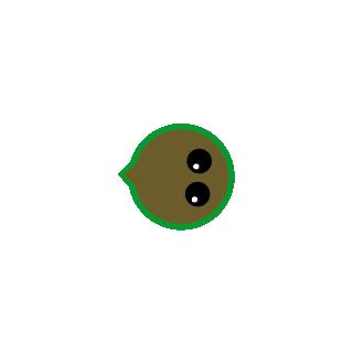 An old pufferfish
