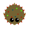 WinterPufferfish2