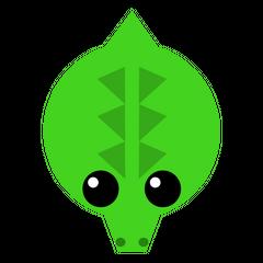 The Croc