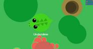 UnderCroc