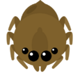 GiantSpider