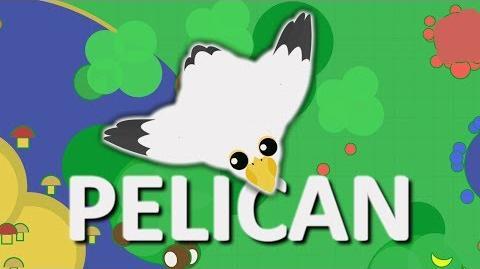 MOPE.IO PELICAN NEW BIRD TEASER 17