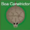 Boaconstrictor