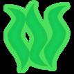 Seaweed e