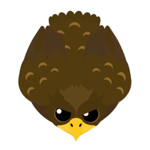Old Golden Eagle
