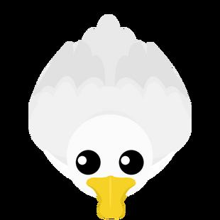 Old Arctic