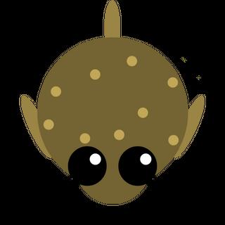 A Pufferfish