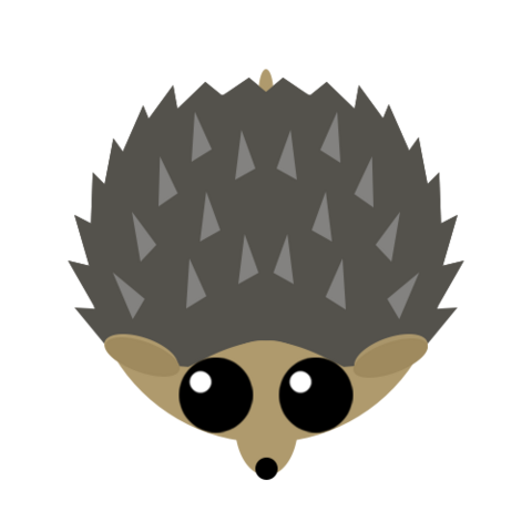 The Hedgehog.