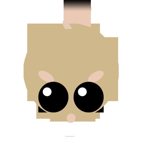 Kangarooratbody