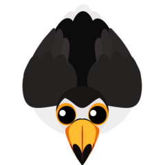 The Toco Toucan. Basic looking design, no special features.