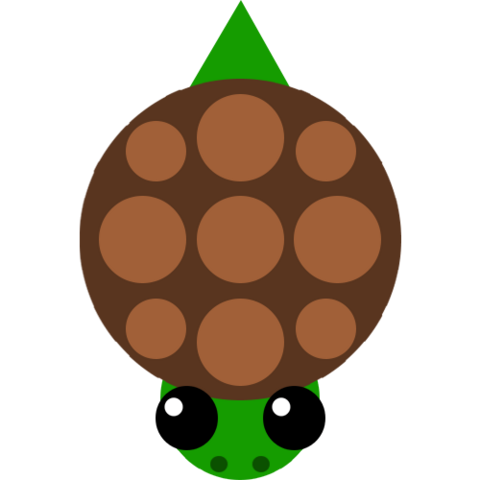 Файл:Turtle.png