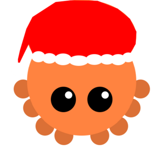 A Winter Skin of the Octopus.