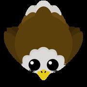 NewEagle