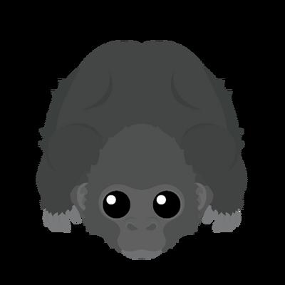 Newgorilla
