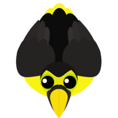 The Choco Toucan. Has its ability recharge 15% faster.