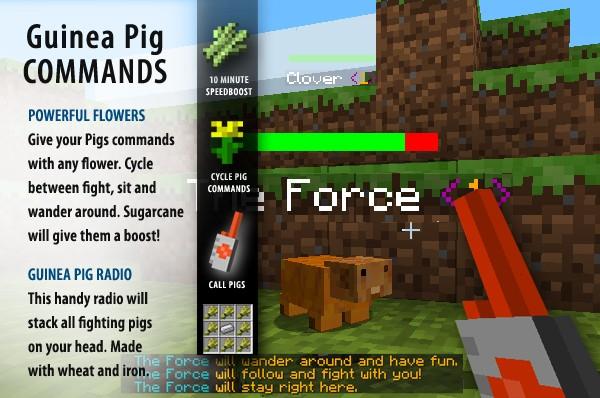 File:MiQ8Guinea pigs.jpg
